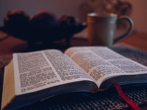 Read the Word Study Freedom
